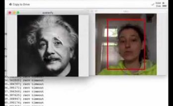 avatarify with albert einstein